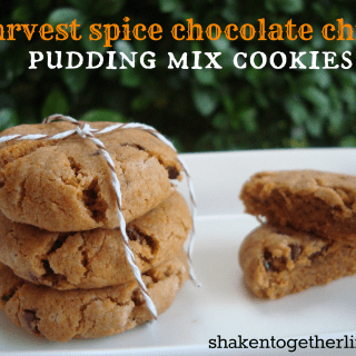 Harvest Spice Chocolate Chip Pudding Cookies
