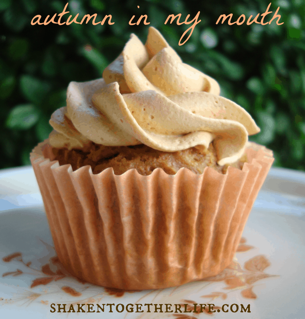 Pumpkin Cupcakes Made With Spice Cake Mix