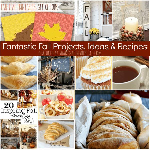Fantastic Fall Projects Ideas Recipes at shakentogetherlife.com