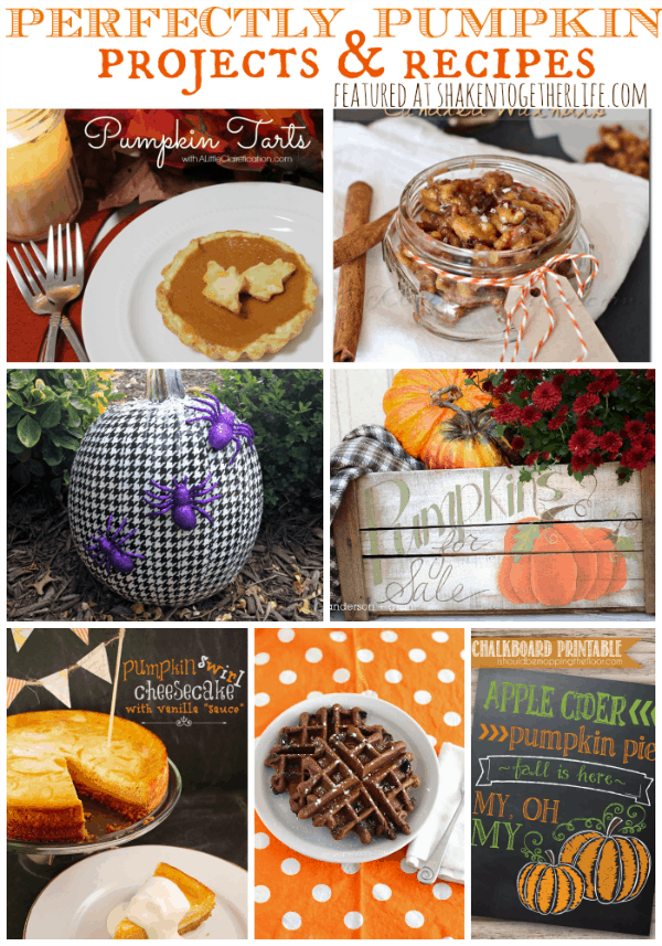 Perfectly Pumpkin Projects & Recipes featured at shakentogetherlife.com