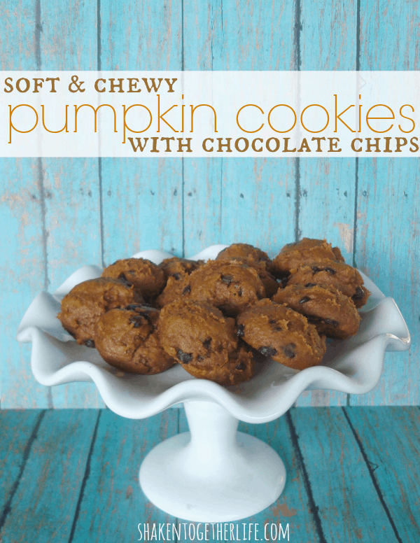 Soft & chewy pumpkin cookies with chocolate chips at shakentogetherlife.com