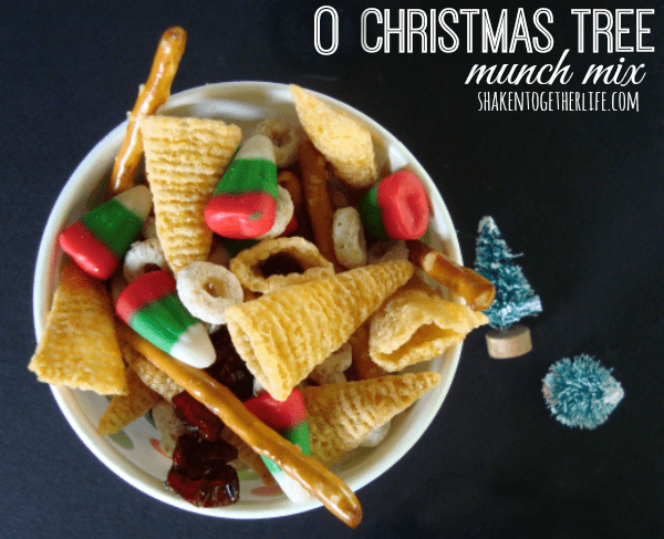 Festive holiday snack mix at shakentogetherlife.com