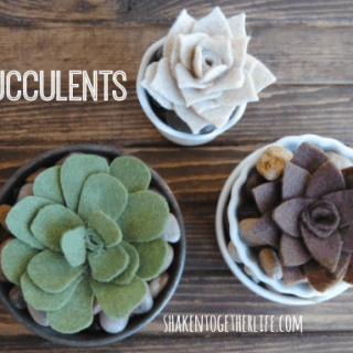 DIY felt succulents - three different varieties - all quick and easy!