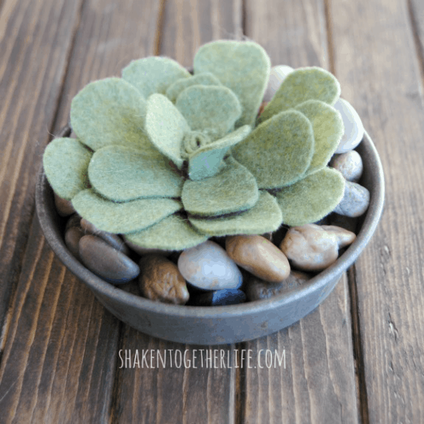 Felt succulents - quick and easy and adorable!