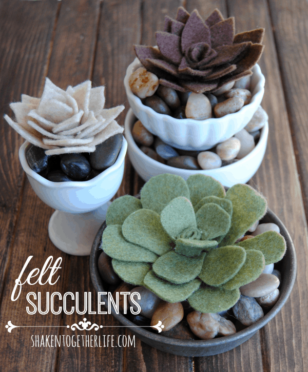 Easy, low-maintenance felt succulents