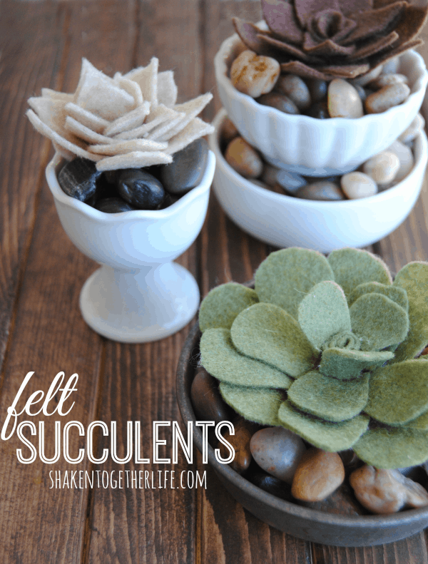 Pretty little DIY felt succulents - tutorial at shakentogetherlife.com