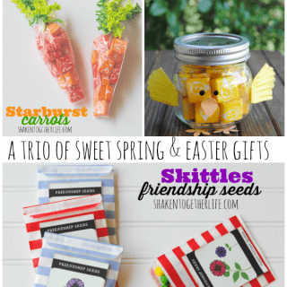 A Trio of Sweet Spring & Easter Gifts {and Seed Packet Printable!}