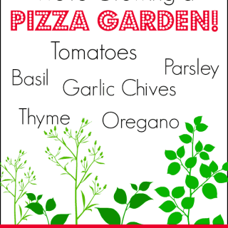 Follow along as we plant a pizza garden and enjoy our tasty harvest!
