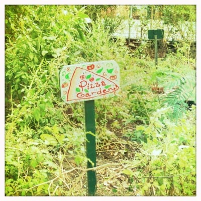 I think I need to DIY a cute pizza garden sign, like this one!  Found here - http://www.gardeningknowhow.com/special/children/growing-pizza-garden.htm