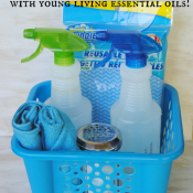 Make a Fathers Day car care kit with DIY all natural cleaners!