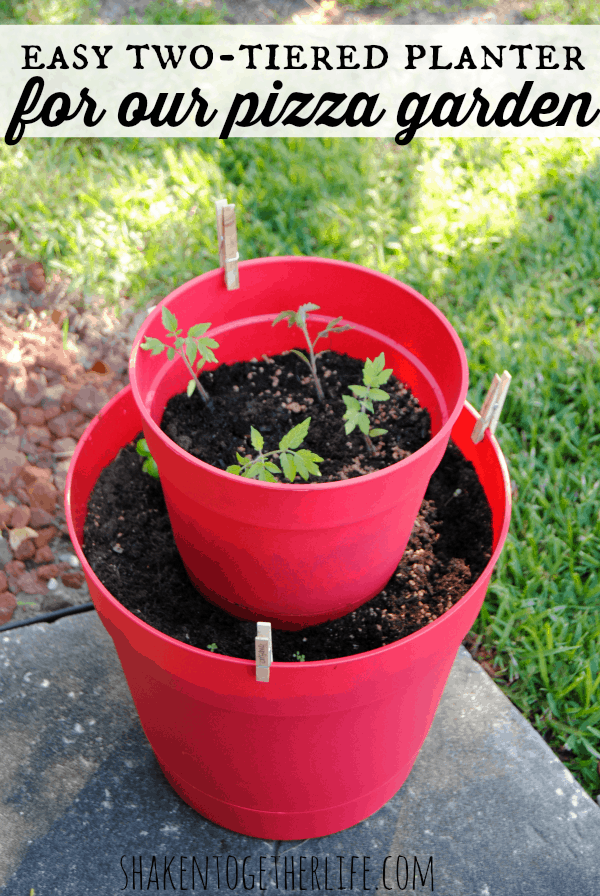 Easy two-tiered planter from colorful plastic pots for our pizza garden!