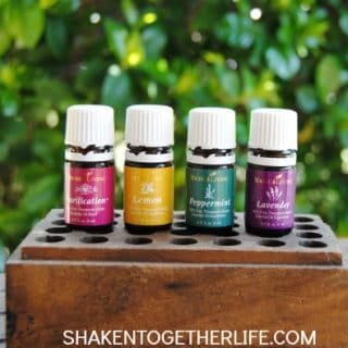 Essential Oils Every Home Needs: Purification {Blog Hop & GIVEAWAY!!}
