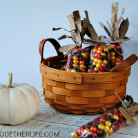 Make Indian Corn Thanksgiving favors with this step by step tutorial. They are gorgeous for place cards, too!