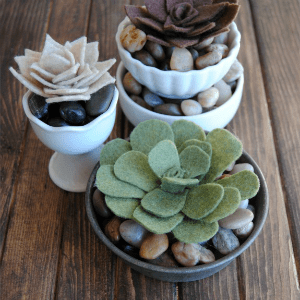Easy tutorial to make Felt Succulents!