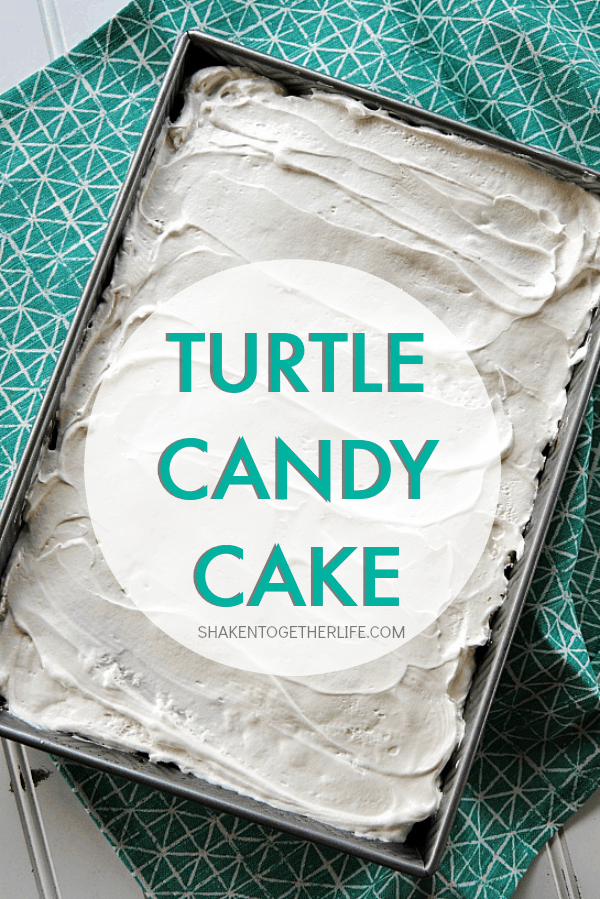 turtle-candy-cake-whole