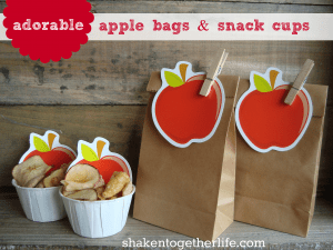 Super simple apple bags and snack cups!