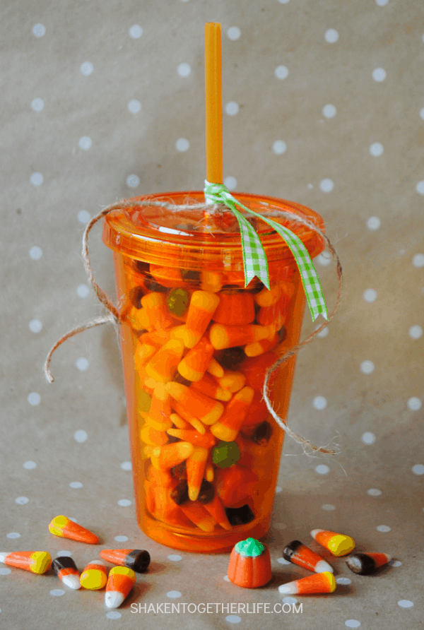 Turn a plain insulated tumbler into an adorable pumpkin themed gift! Perfect for teachers, coworkers and friends!