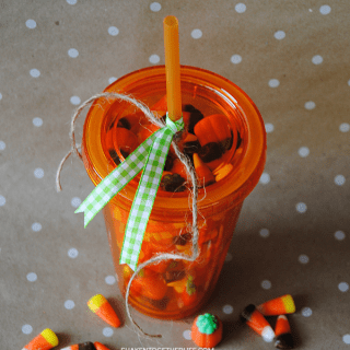 Insulated Tumbler Pumpkin – Easy Gift Idea!