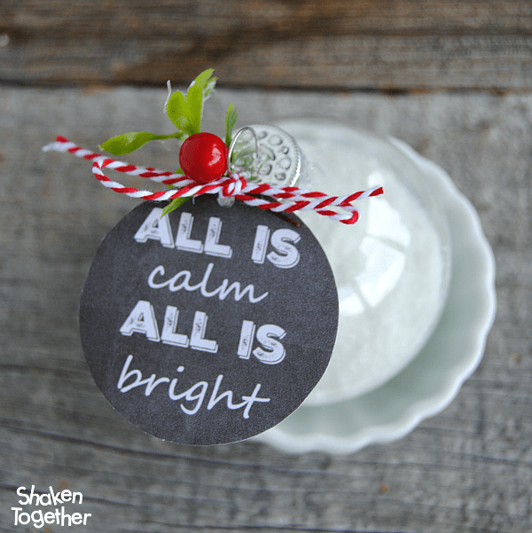 Bath Salts Ornaments filled with homemade bath salts are so thoughtful for holiday gift giving! 3 printable chalkboard tags included!