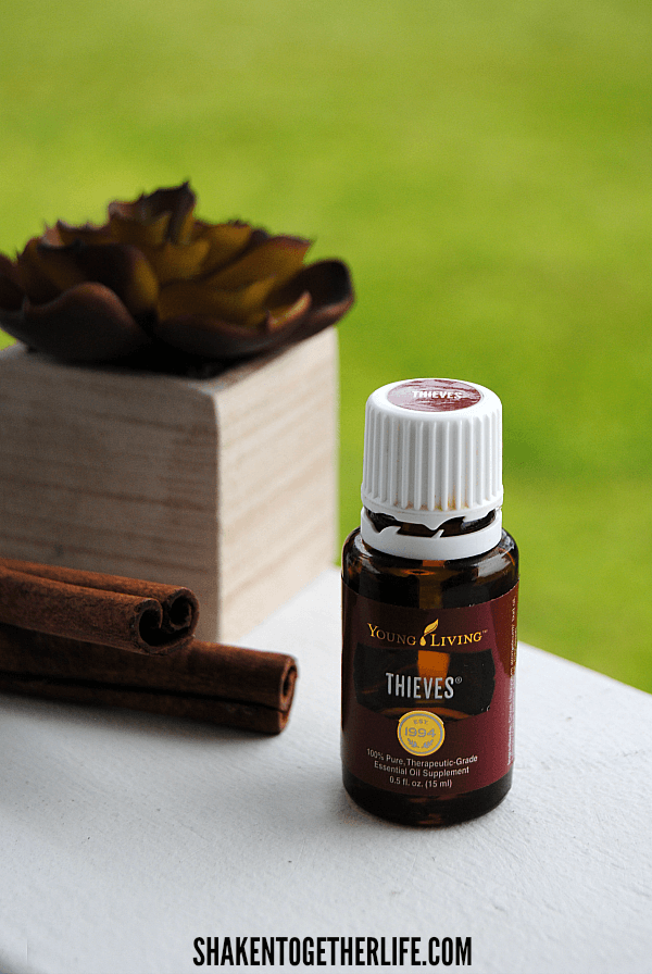 One of the star ingredients in our DIY Foaming Thieves Hand Soap on the Cheap is Young Living Thieves essential oil - I love this blend of cinnamon, clove, lemon, eucalyptus and rosemary!