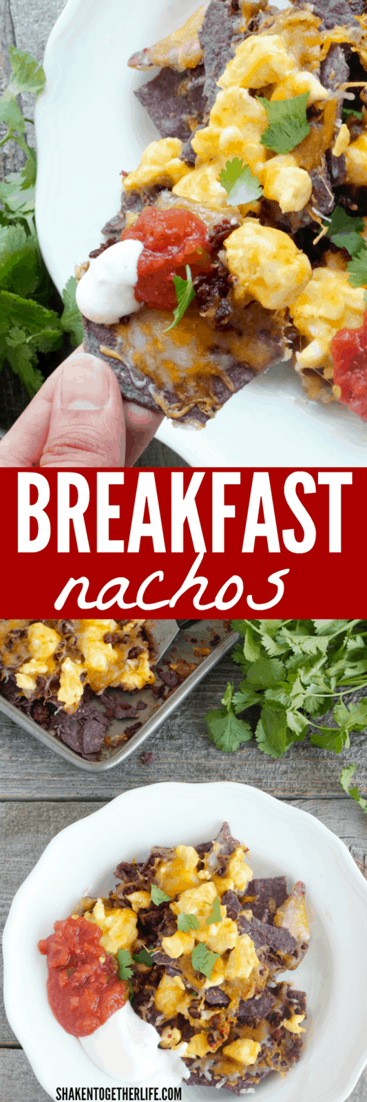Breakfast Nachos - piled high with cheese, scrambled eggs and chorizo - are the perfect start to the day! Great dish for Cinco de Mayo!
