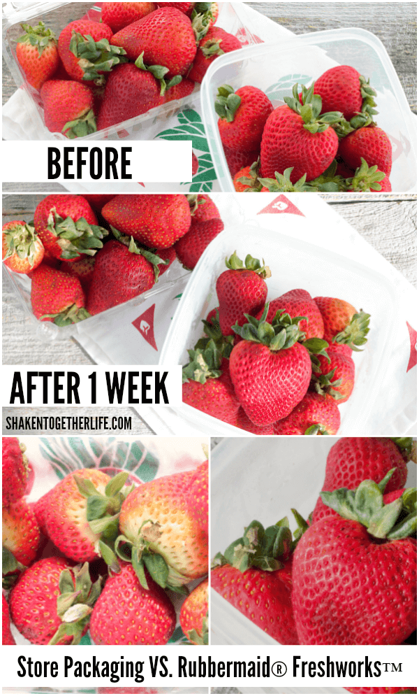 strawberries after storing in produce container or store container comparison