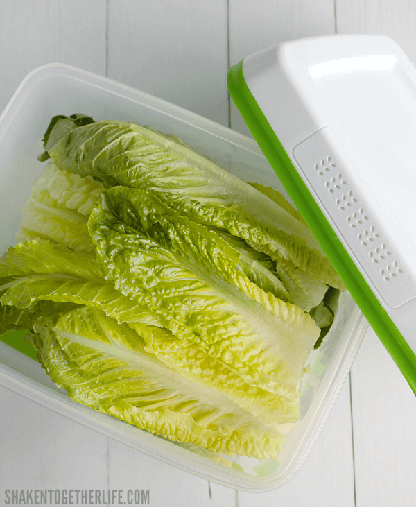 Asian Turkey Lettuce Wraps with Sesame Ginger Slaw - keep lettuce fresh longer with Rubbermaid® FreshWorks™ Produce Savers!