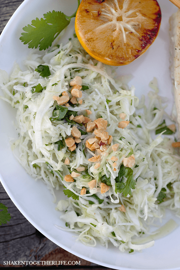 Crisp and fresh, Cilantro Cabbage Slaw is the perfect partner for Grilled Halibut!