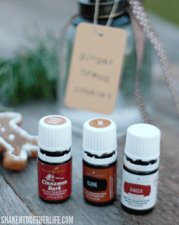 Holiday Room Spray Recipes with essential oils - mix up a blend with cinnamon, ginger & clove essential oils for the sweet spicy scent of gingerbread cookies!