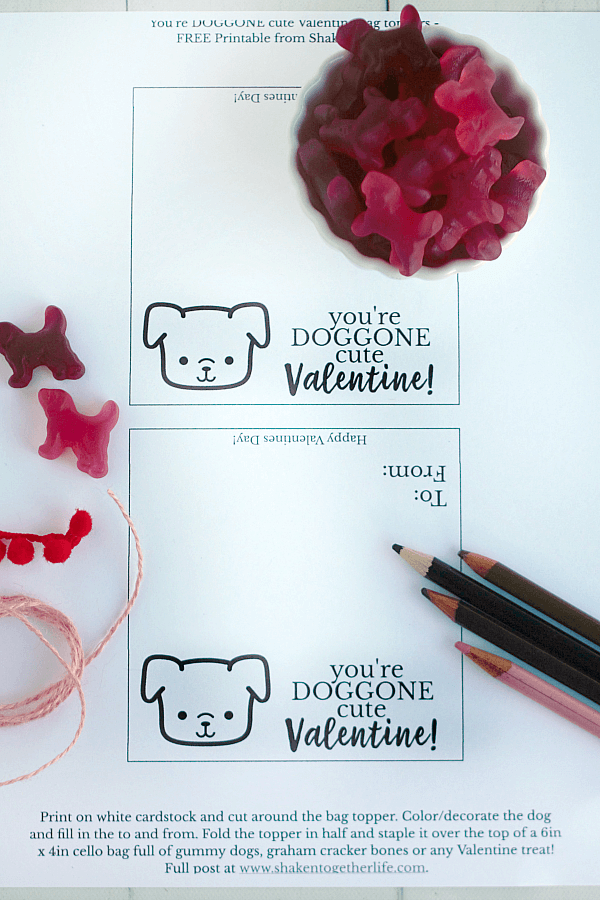 Grab our FREE printable bag toppers to make our DOGGONE Cute Valentines! They are so fun for the kiddos to color, decorate and give!