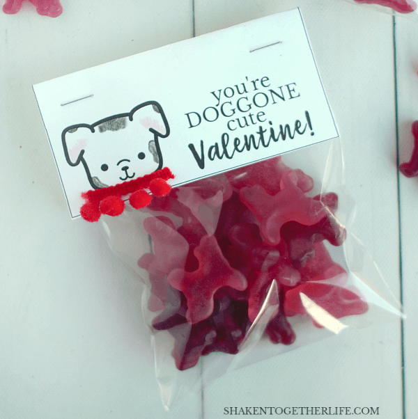 DOGGONE Cute Valentines for boys - this little dalmatian got a pom pom collar!