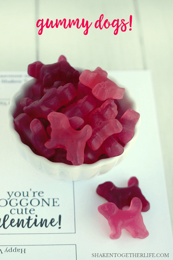 Gummy dogs are perfect for our DOGGONE Cute Valentines! Grab the free printable Valentine bag toppers, too!