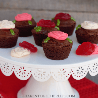 Brownie bites and chocolate frosting are the beginning of these easy, no bake Rose Garden Brownie Bites! They are perfect for a tea party, Valentine's Day or a floral themed brunch!