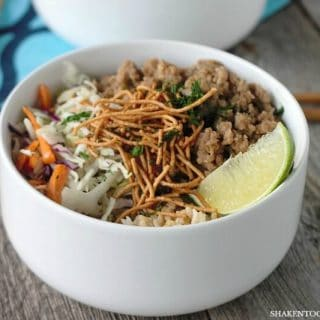 Korean Turkey Rice Bowls – A 20 Minute Meal!