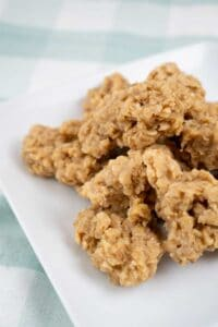 pumpkin no bake cookies on white plate