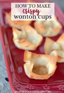 wonton cups on red plate