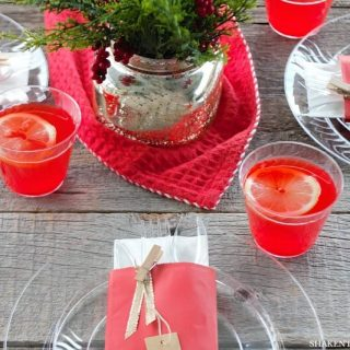 Don't stress about holiday entertaining! Snag our 10 Secrets for Holiday Entertaining and an easy holiday place setting idea! We've got tips and tricks on food, serving, decor and more!